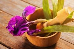 Irise des herbes en mortier avec le pilon Images stock