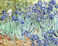Free Irises 1889 By Vincent Van Gogh Royalty Free Stock Image - 116047036