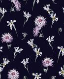 Irises and chrysanthemums on a dark blue background stock image