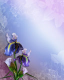 Irises invitation floral border Royalty Free Stock Photos