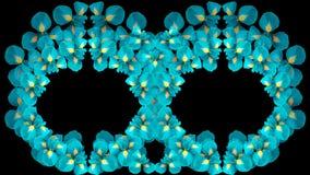 Irises Türkisblumen Zwei Ringe Kreise von Blumen auf einem schwarzen Hintergrund lokalisiert Vektorabbildungskala zu irgendeiner  Lizenzfreies Stockbild