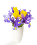 Irises and tulips. In the white vase  on white Stock Photos