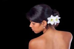 Irises Royalty Free Stock Photo