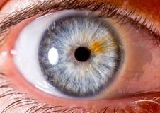 Irisfotografie Dichte die macro van een oogappel wordt geschoten Blauw met vezels en oranje strook stock foto