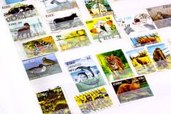Irish animal stamps in album Royalty Free Stock Photo