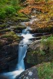 Irish autumn waterfall forest Stock Photography