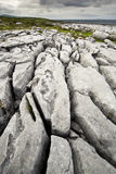 The Irish Burren. In Clare county Royalty Free Stock Photography