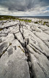 The Irish Burren. In Clare county Royalty Free Stock Images