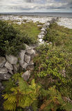 The Irish Burren. In Clare county Stock Photos