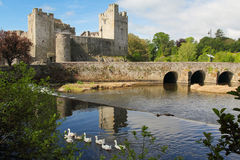 Irish castle of Cahir. In Tipperary county. Morning light Stock Photography