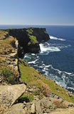 Irish cliffs Royalty Free Stock Photography