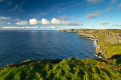 Irish Cliffs of Moher. Cliffs of Moher in Co. Clare, Ireland Stock Images