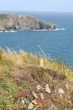 Irish cliffs scenery. Summer in ireland, plantation on cliffs and ocean vie Royalty Free Stock Image