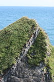 Irish cliffs scenery, cork county. Cliffs scenery at the end of irish summer Royalty Free Stock Image