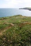 Irish cliffs scenery, cork county. Summer in ireland, standing on cliffs is much better view Stock Photos