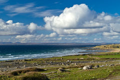 Irish coast of Burren Royalty Free Stock Image