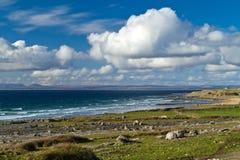 Irish coast of Burren. In Co. Clare Royalty Free Stock Image