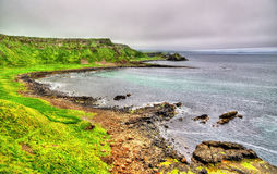 Irish coastline near the Giants Causeway Royalty Free Stock Photo