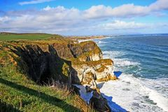 Irish coastline in Springtime Stock Images