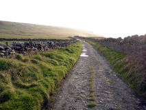 Irish country lane Royalty Free Stock Photos