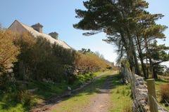Irish country track scene. Country track on the Carraun peninsula, county Mayo, Ireland Stock Photos