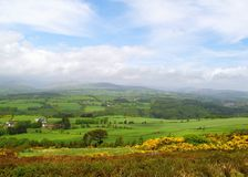 Irish Countryside. Countryside in Ireland on a sunny day Stock Images