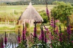 Irish Crannog. An ancient irish settlement on a lake royalty free stock photos