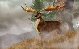 Irish Elk stock illustration