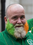 Irish fan in Poznan. Royalty Free Stock Image