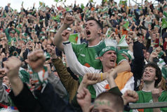 Irish Fans Stock Photo