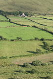 Irish farmland, kerry county. County kerry, dingle area, irish farm and hills Stock Photos