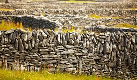 Irish fences Royalty Free Stock Photography