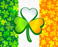 Irish flag from green and orange clovers Stock Photography