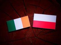 Irish flag with Polish flag on a tree stump isolated. Irish flag with Polish flag on a tree stump vector illustration
