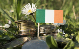 Irish flag with stack of money coins with grass Royalty Free Stock Photo