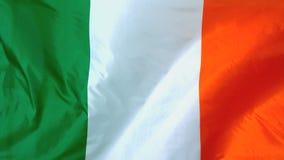 Irish flag waving in the wind stock footage