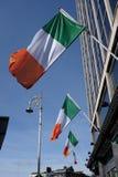 Irish flags in a row Royalty Free Stock Photos