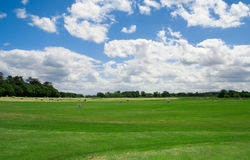 Irish golf course in Adare Royalty Free Stock Images