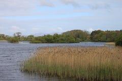 Irish lake Stock Image