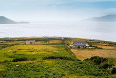 Irish landscape. With green grass, a cottage and ocean Royalty Free Stock Photos