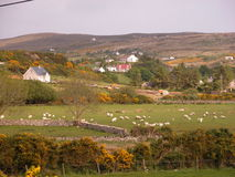 Irish landscape. A general view near Upper Ardsbeg, Donegal, Ireland stock images
