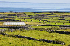 Irish Landscape, Aran islands (Ireland). Irish Landscape, Inishmore, Aran islands in Ireland Royalty Free Stock Photo