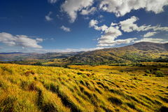 The Irish landscape, Ireland, nature Stock Photo