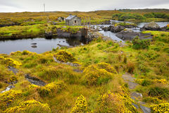The Irish landscape, Ireland, small causeway Royalty Free Stock Images