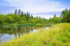Irish landscape with meadow, trees and river - Ireland Stock Images