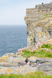Irish landscape - view from Dun Aengus, an ancient fort. Royalty Free Stock Image