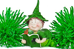 Irish Leprechaun. Little Irish leprechaun with green chrysanthemums Royalty Free Stock Photos