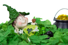 Irish Leprechaun. In green shamrocks Stock Photo