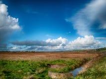 Irish meadow with a stream running alongside stock photos