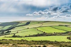 Irish meadows Stock Photo